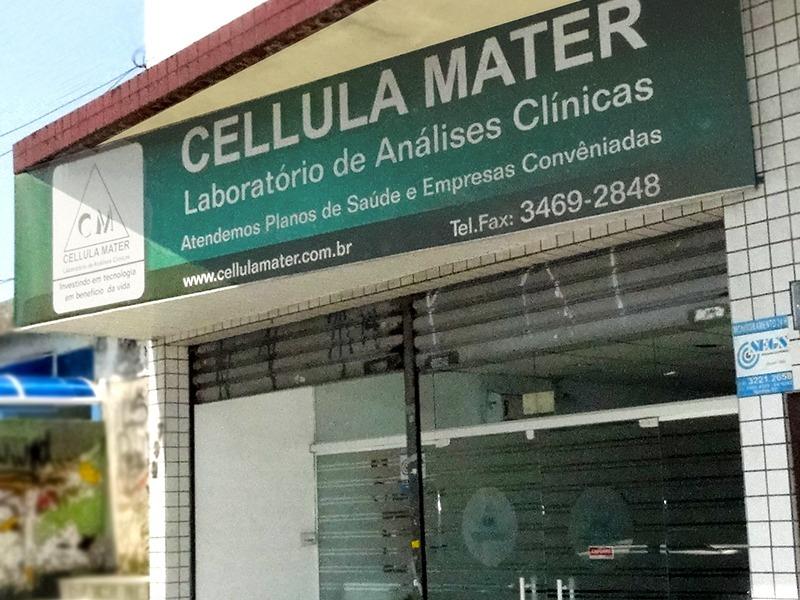 cellularMENOR2
